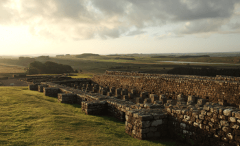Housesteads What's On