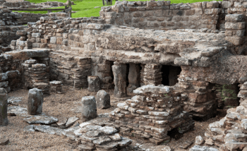 Vindolanda What's On